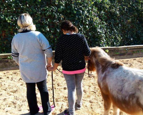 Terapia asistida con caballos para reforzar el vínculo famliar