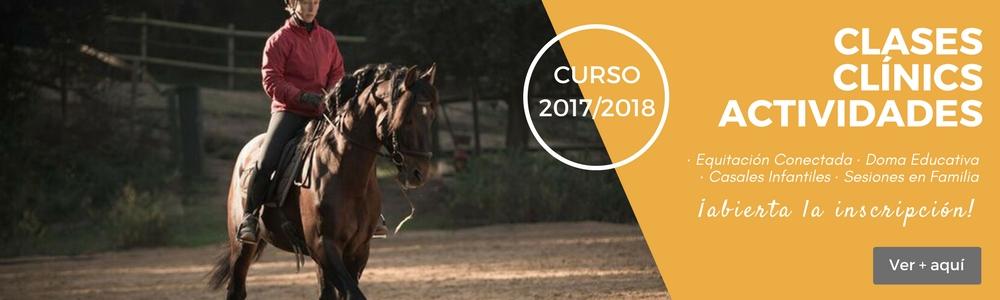 Equitación Conectada Clases Clínics