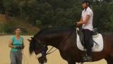 Horseway_escuela_equitacion_conectada