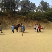 educacion-emocional-caballos