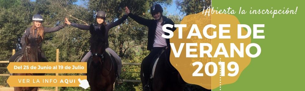 Equitación Verano Horseway