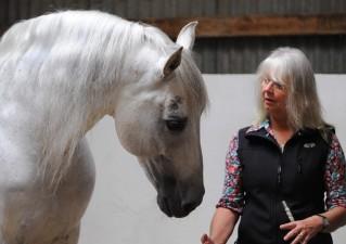 Jenny Rolfe con Delfín un semental PRE