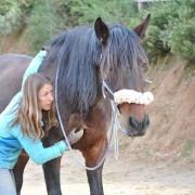 clinic-equitacion-conectada