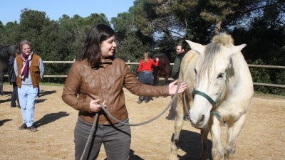 Natural horsemanship workshop, learning to handle the horse with a rope
